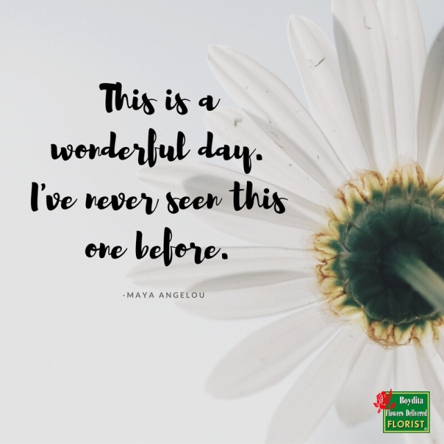 Have A Wonderful Wednesday The Wounded Heart